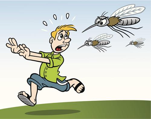 老伴儿老是在耳边叨唠有 蚊子 ,说说这都是怎么回事